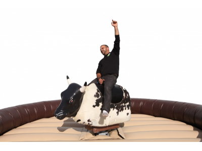 Person on a Mechanical Bull