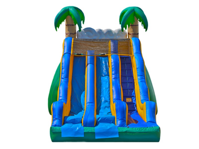 17' Tropical Dual Dry Slide