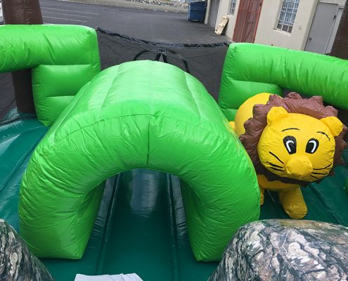 Interactive Jungle Obstacle Course - Lion