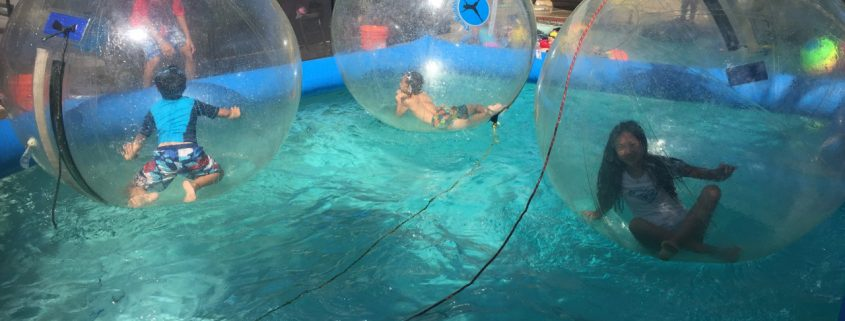 Kids playing inside plastic bubble in pool