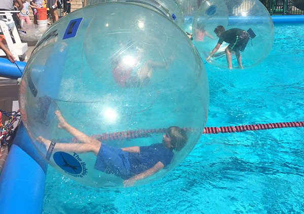 City Of Hidden Hills rent The Bubble Rollers for Public Swimming pool.