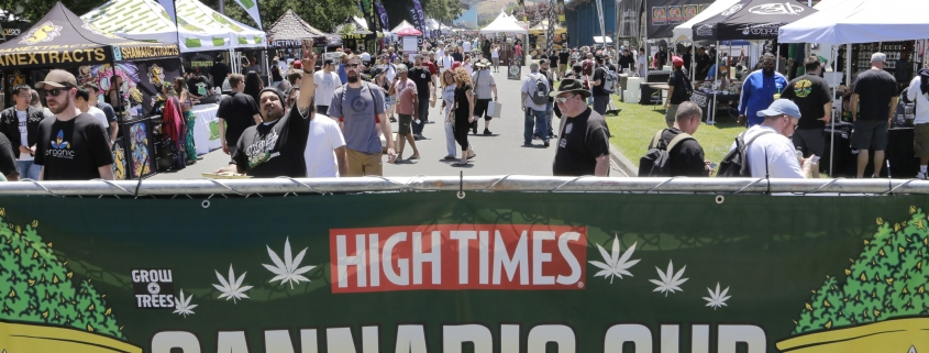 Enthusiasts flock to the High Times Cannabis Cup at the Sonoma County Fairgrounds in Santa Rosa, Calif. Saturday, June 3, 2017. (James Cacciatore/Special to the Marin Independent Journal)